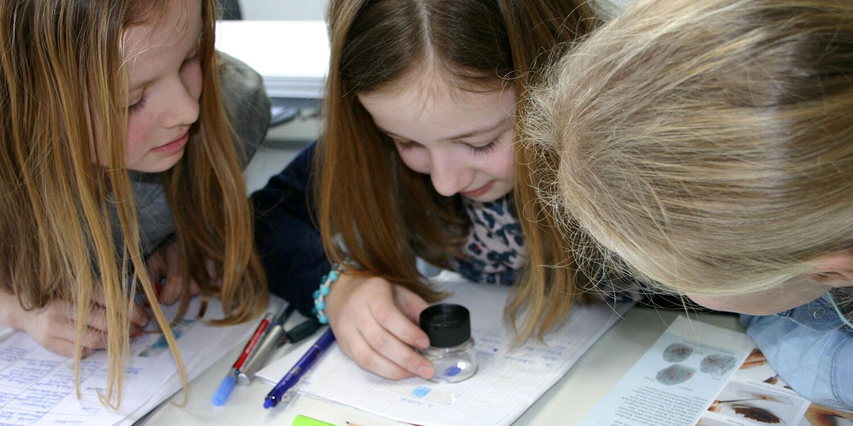 Schüler im Nawi-Unterricht