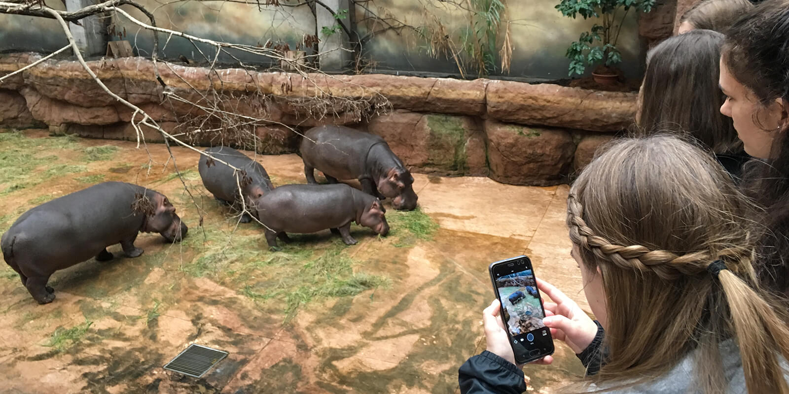 Zoo Breslau
